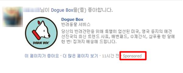 페이스북-dogue box