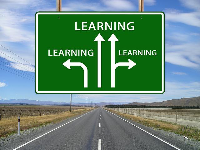스타트업-배움